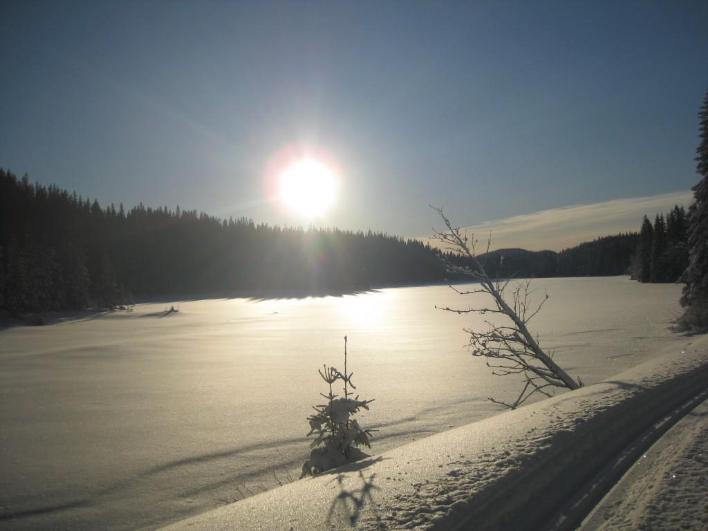 06.01.12.Låg januarsol over Langtjennet