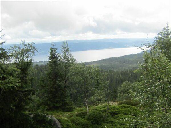 14.07.12. Utsikt mot Mjøsa 002