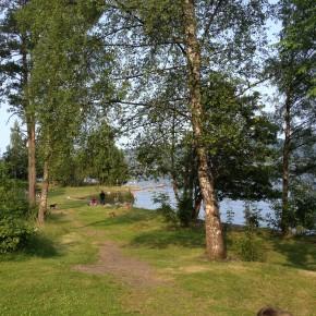 Dugnad i Årneslandet