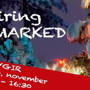 Julemarked på Fløygir