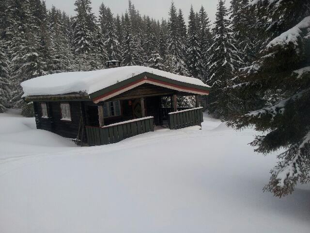 Skitur til Tørrtopp