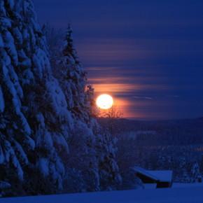 Måneskinnstur til Almelihøgda