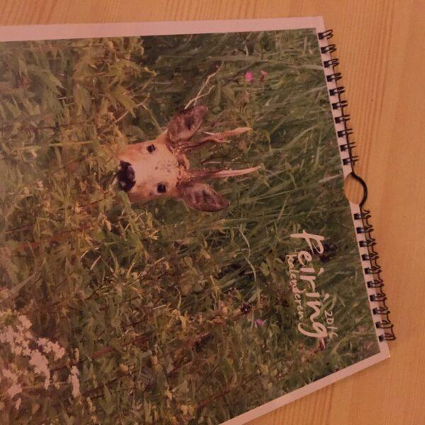 kalender 16