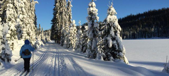 Skiturer vinteren 2018