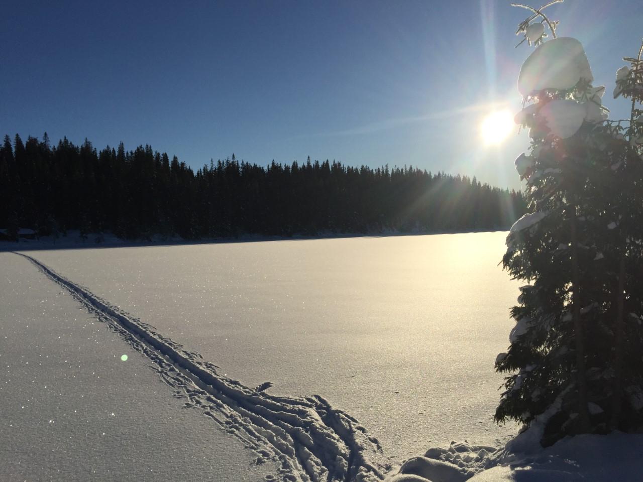 Søndagens skitur går til Langtjennet