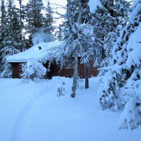 Skitur til Steintjernet søndag 18.februar