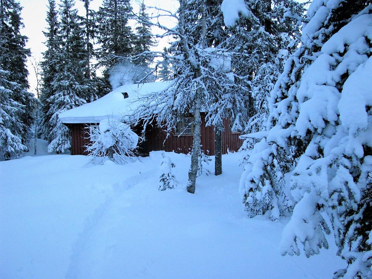 Skitur til Steintjernet 24.februar