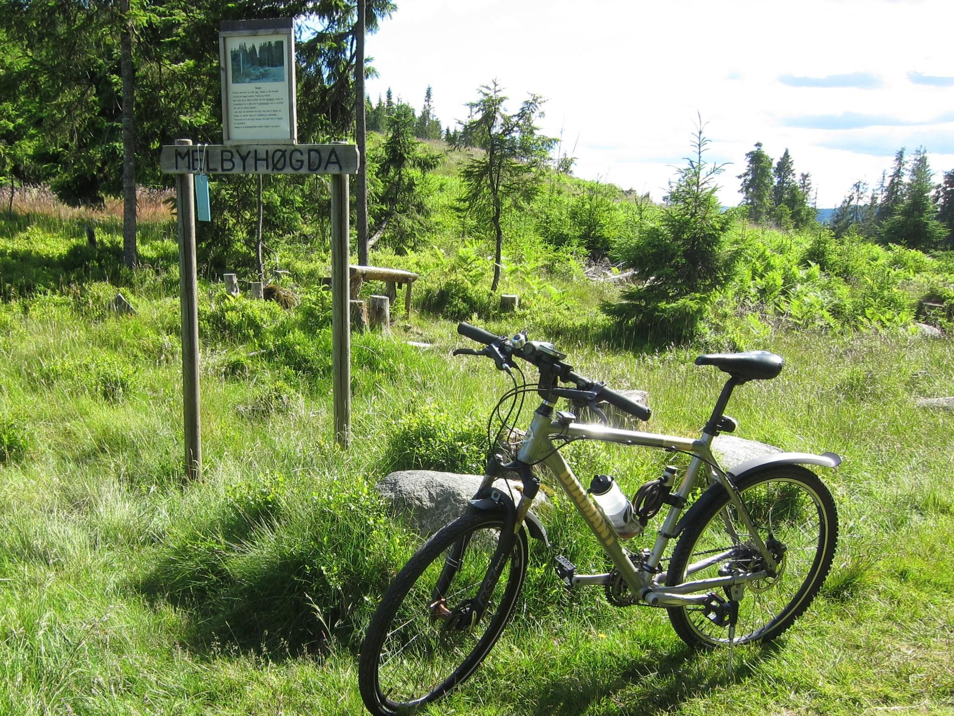 Sykkelruter på Feiringåsen